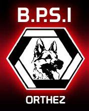 B.P.S.I
